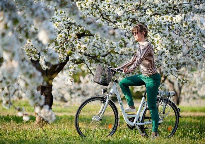 E-Bike Tips