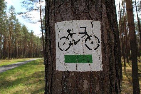 mooiste fietsroutes van Nederland