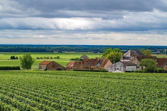 Fietsen in Bourgogne de mooiste routes en tips