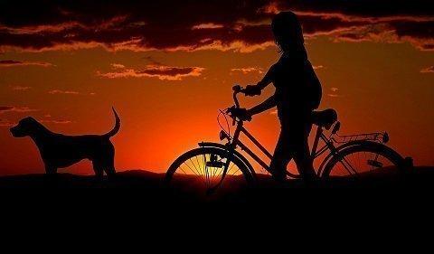Top 5 Popal Cooper fietsen